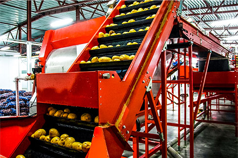 Food Processing & Distribution - Choose DuPage
